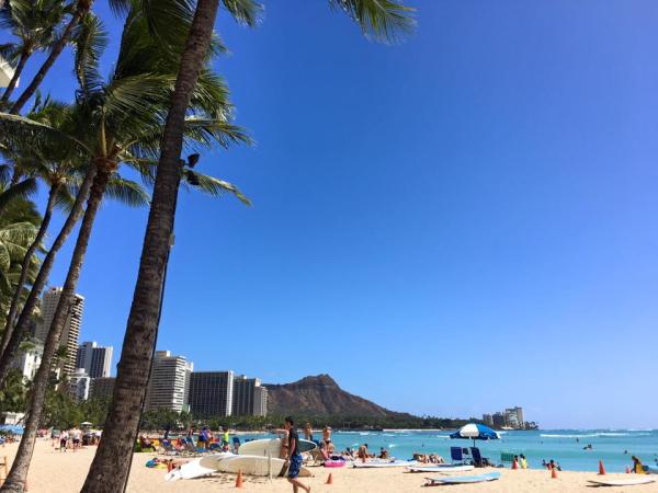 ハワイウェディング0103