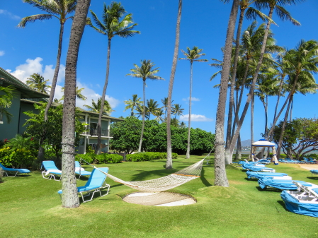 ハワイウェディング0181